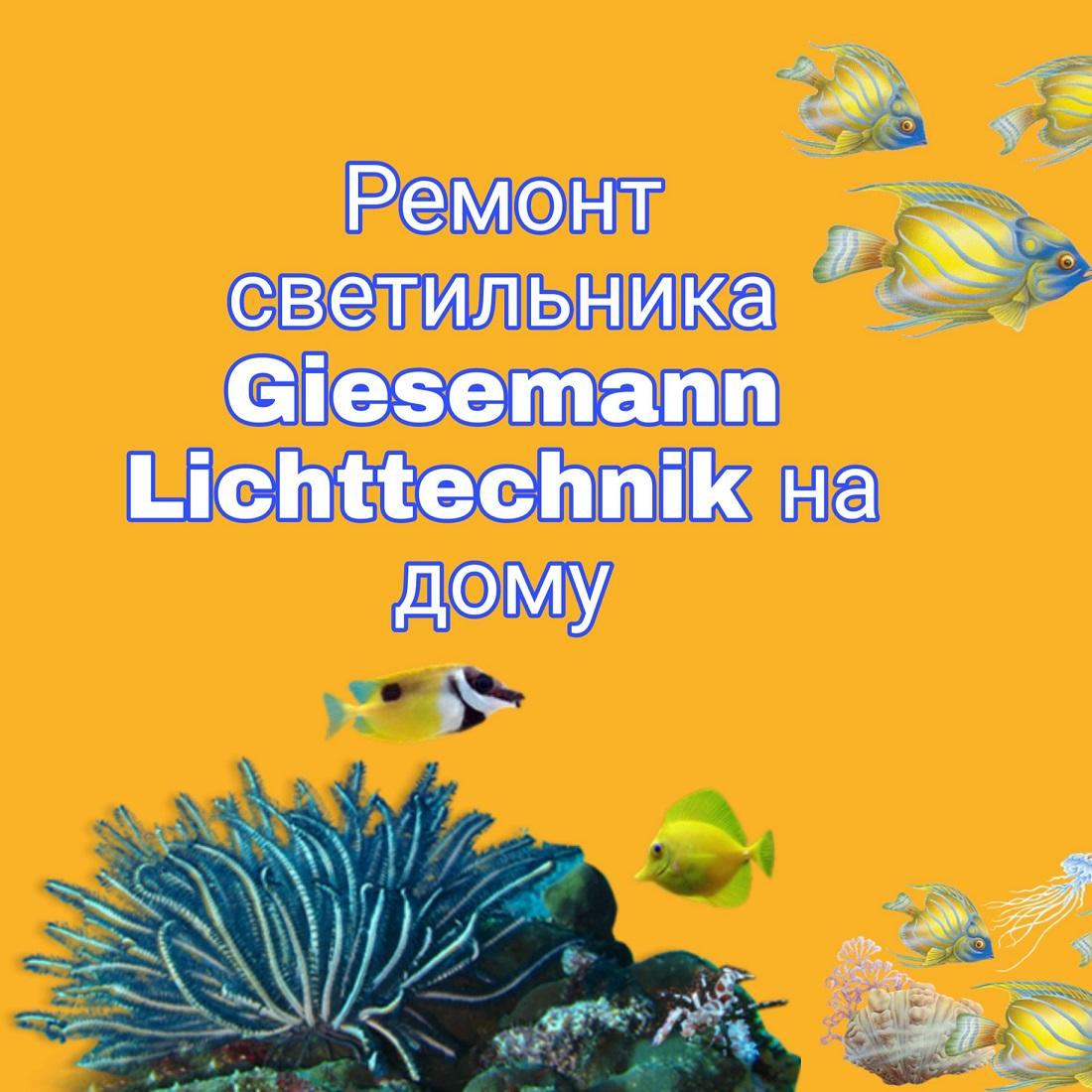 Ремонт аквариумного светильника Giesemann Lichttechnik на дому