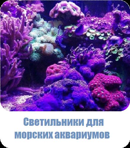Изготовление светильников для морских аквариумов