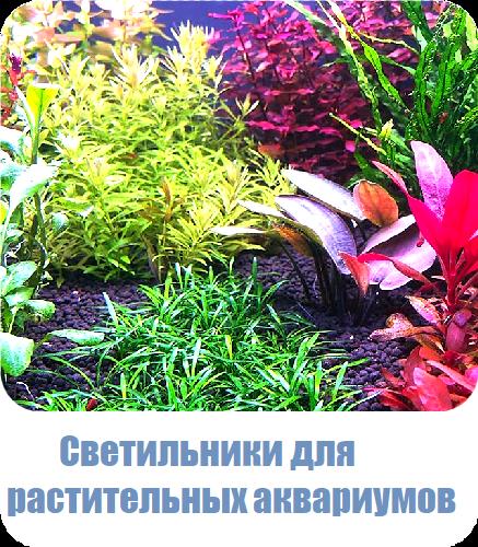Изготовление светильников для растительных аквариумов